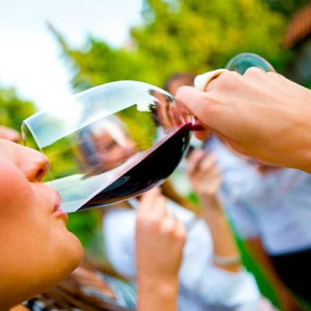 Tasting Experience :: © Bodegas Nestares Rincon