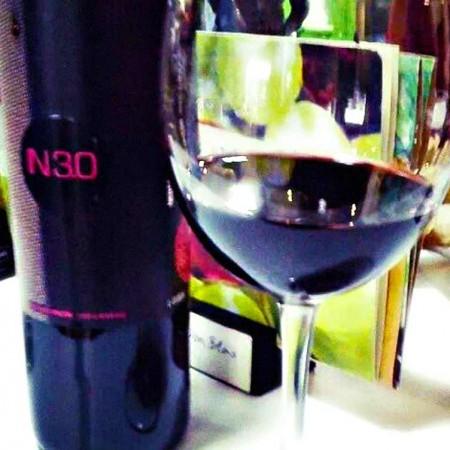 Botella IN 3.0 :: © Bodegas Nestares Rincón